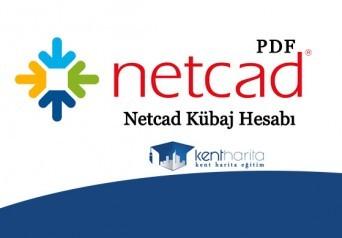 Netcad kübaj hesabı pdf
